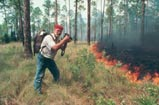Bruce photographing a prescribe burn  on Apalachicola National Forest